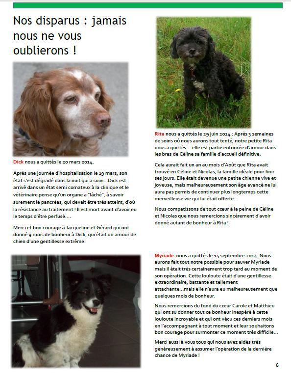 Bulletin 6