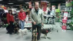 Journee de solidarite pour les chiens 20 12 2014