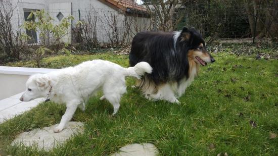 Zoé et Ulysse